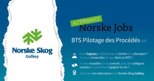 Norske Job en Alternance